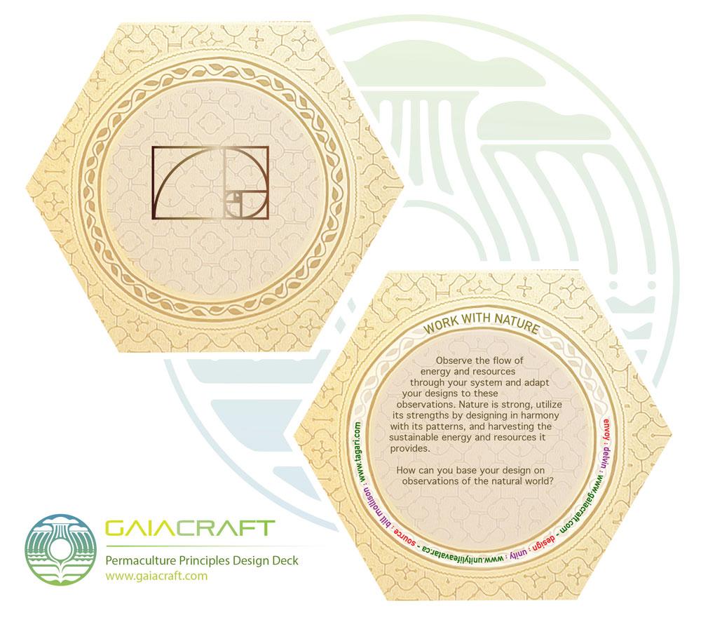design : www.unitylifeavatar.ca envoy : www.visionarypermaculture.com